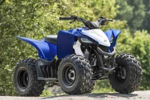 2020 YFZ50, 2019 yfz50 top speed, 2019 yfz50 for sale, 2019 yfz50 price, 2019 yamaha yfz50 top speed,